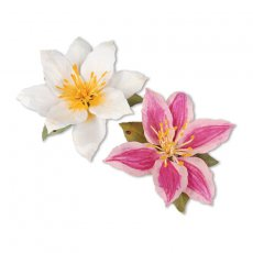 659257 Thinlits Die Set 8PK - Flower, Clematis