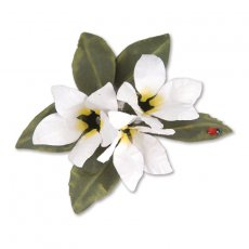 659264 Thinlits Die Set 8PK - Flower, Stephanotis