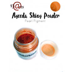 SHIN-21 Ayeeda Shiny Powder Orange