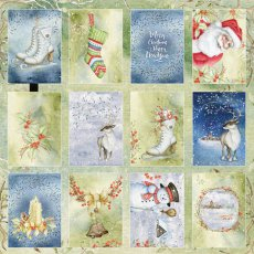 CP-WDR07 Papier jednostr.-elementy-30,5x30,5 Winter Dream