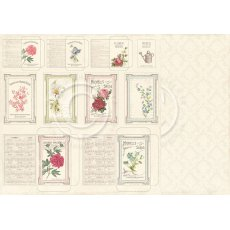 PD3608 Papier dwustronny Seed packets - Vintage Garden