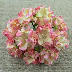 SAA-346-6 Gardenia champagne pink - 6 cm
