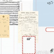 TCSN1005  Papier dwustronny 30,5 x 30,5 cm Ledgers- Stationery Noted Teresa Collins