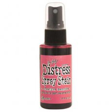 TSS42273  Distress Stain Spray-Festive Berries