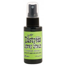 TSS44185 Distress Stain Spray-twisted citron