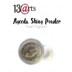 SHIN-27 Ayeeda Shiny Powder Warm Gold
