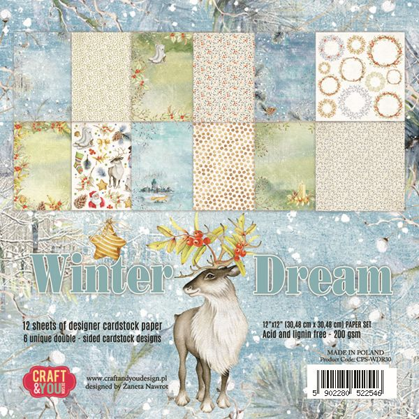 CPS-WDR30 Zestaw papierów 30,5x30,5 cm Craft&You Design-Winter Dream