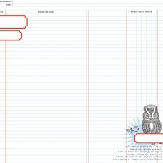 TCSN1004 Papier dwustronny 30,5 x 30,5 cm Owl Ledger - Stationery Noted Teresa Collins