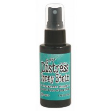 TSS42259 Distress Stain Spray-Evergreen Bough
