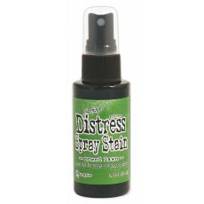 TSS42341  Distress Stain Spray-Mowed Lawn