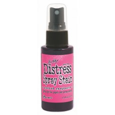 TSS42396 Distress Stain Spray-Picked Raspberry