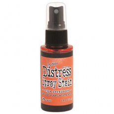 TSS42433 Distress Stain Spray-Ripe Persimmon